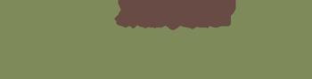 Diane Meyer Oakville Ontario Chiropractor Logo